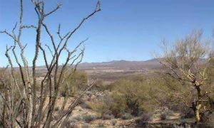 Arizona RV Land for Sale with half mile Frontage