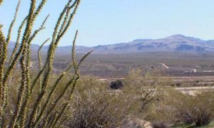 Mohave County RV Land For Sale in Arizona
